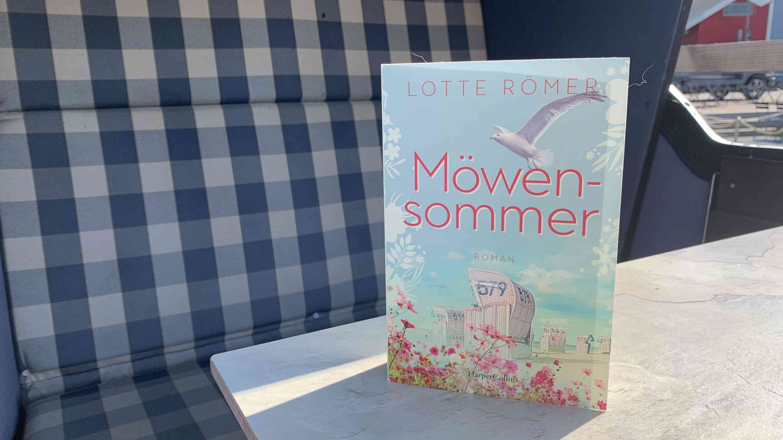 """You are currently viewing """"Möwensommer"""" von Lotte Römer"""